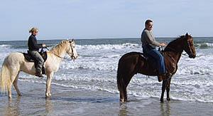 oceanridehorses